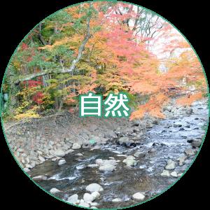 修善寺 観光案内 自然