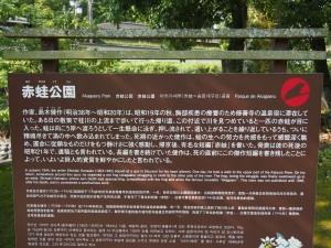 修善寺 赤蛙公園 ほたる鑑賞1