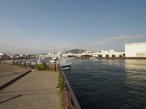 沼津港の画像