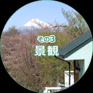 修善寺その3