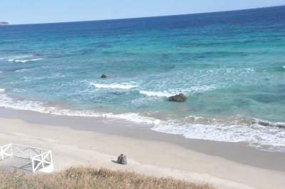 伊豆のコテージから近い海