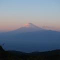 達磨山からの富士山