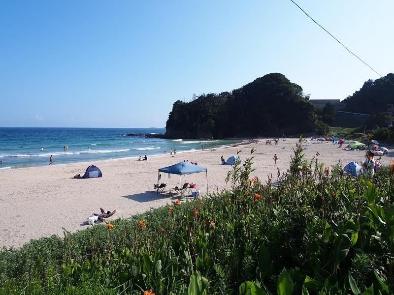 入田浜海水浴場のビーチ。ソテツが生い茂り、南国ムードの漂う落ち着いた海岸。国道の喧噪からも離れているのでのんびりと過ごせます