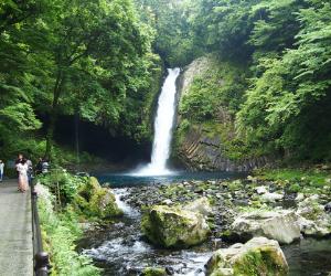 浄蓮の滝全景