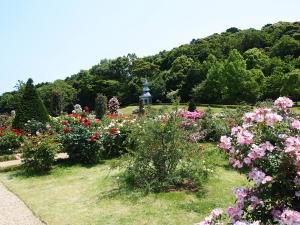 河津バガテル公園、公園内から「キオスク」