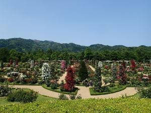 河津バガテル公園、「キオスク」からの景色