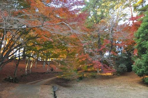 修善寺温泉の北側山間部一帯の約80haの公園内にもみじ林、梅林などがあり四季折々の花を楽しめます。