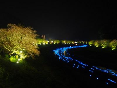 南伊豆町のみなみの桜と菜の花まつり