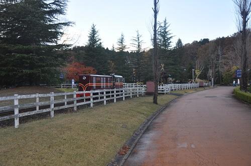 日本で唯一の15インチゲージ鉄道が走っていますので、広い公園内の移動にご利用下さい。