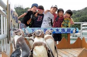 ペンギンの餌付けなども楽しめる 下田海中水族館