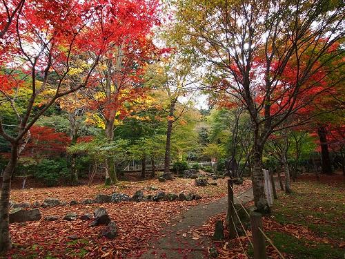伊豆の文学や自然に触れられる道の駅です