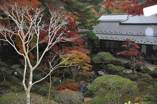 修禅寺の庭。公開は1年に1回のみ。回遊庭園になっています。