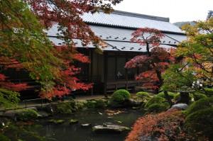 修善寺の庭園 特別公開