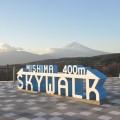 三島スカイウオークと富士山
