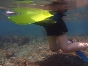 ヒリゾ浜で泳ぐ