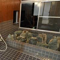 修善寺フォーレスト 大型棟の岩風呂温泉