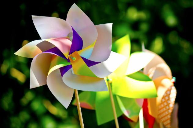伊豆・下田特有のお祭り/風の花祭り かざぐるま